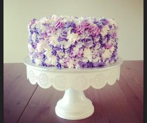 cake  47 (1)