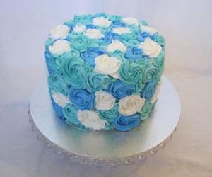 cake21.jpg (1)
