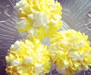 cupcake23_opt