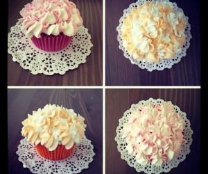 cupcake26_opt